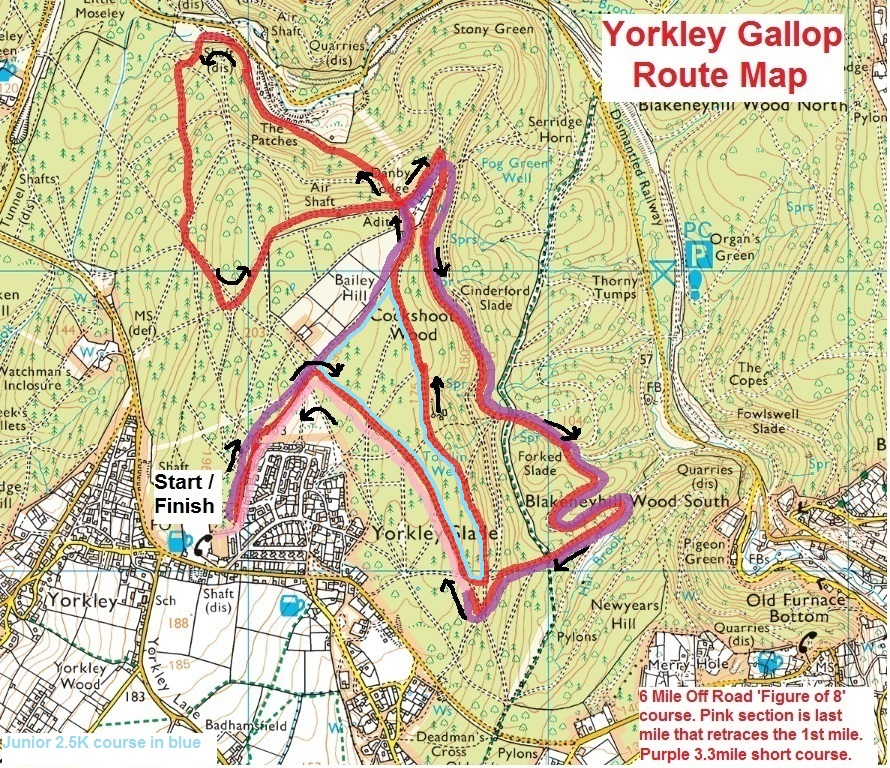 yorkley-gallop-6-3-junior